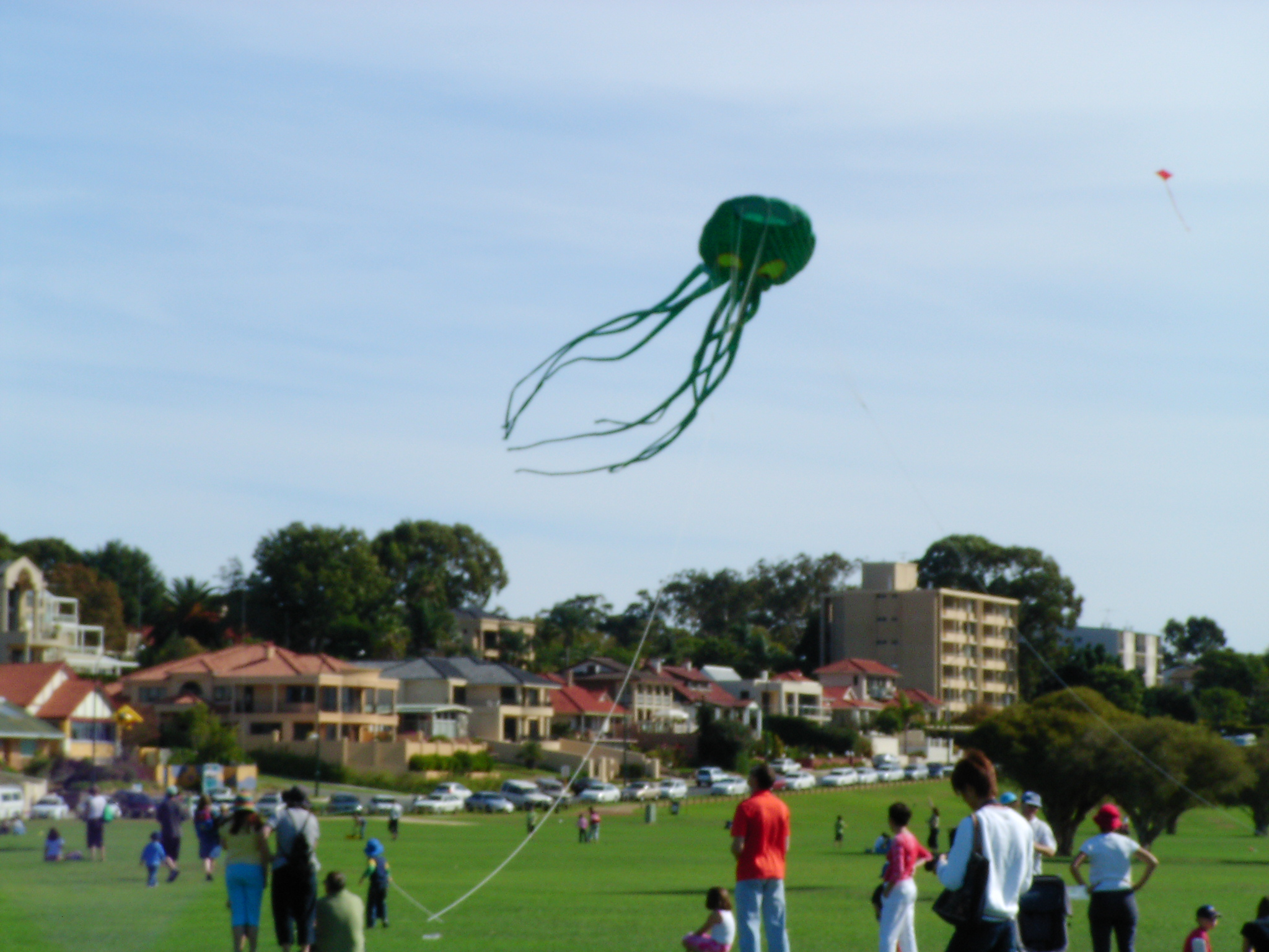 Attack of the Octopus Kites