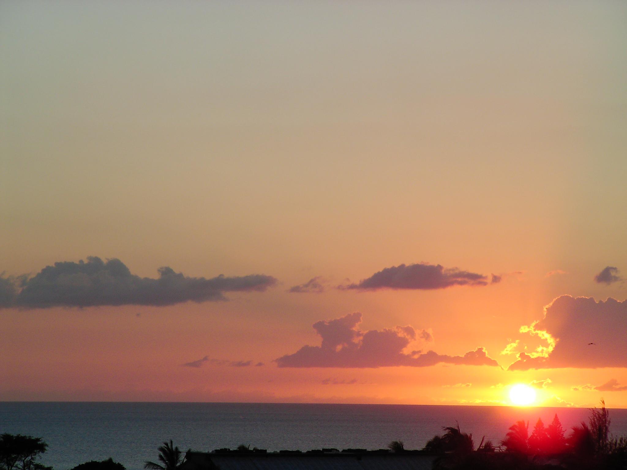 Sunset #(lots)