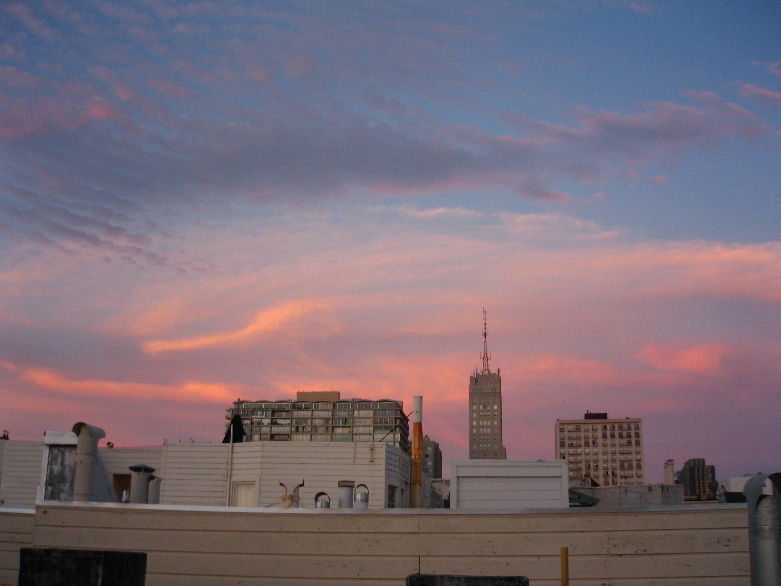 Miller's Roof